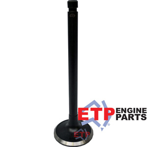 Exhaust Valve for Nissan TB42